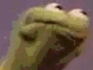 Kermit The Frog Angry Face