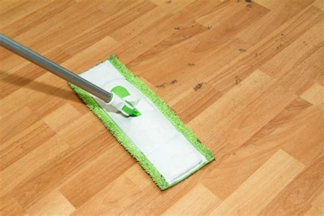 bellawood floor cleaner walmart finding a terrycloth mop thriftyfun
