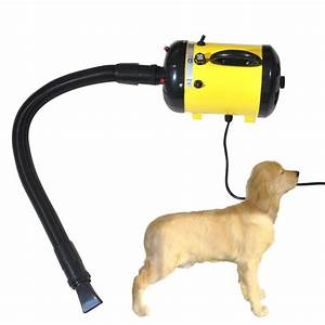2400w adjustable 2 speed grooming pet hair dryer dog cat With dog dryers for sale