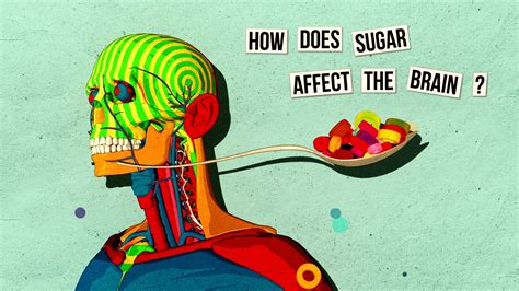 sugar affects  brain  science explorer
