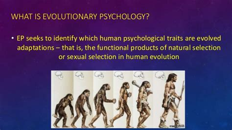 evolutionary psychology aggression