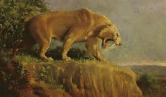 sabertooth cat history of geology sabertooth cat bone size does matter