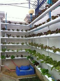 watering pvc pipe garden good ideas vertical garden diy hydroponic gardening hydroponics