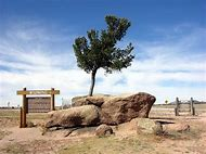 Tree Rock Wyoming