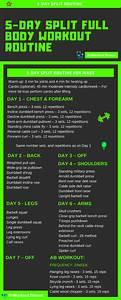 Best Muscle Building Workout Plans