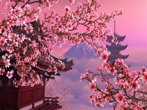 fiore giapponese l hanami 232 l atto di osservare i ciliegi in fiore e in