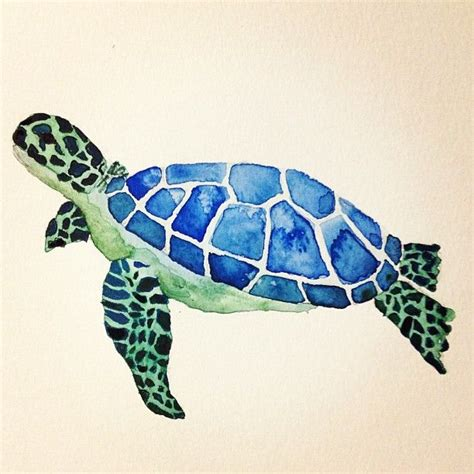 colors of the turtles sea turtle water color painting i made my personal pins