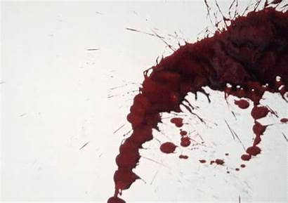Bloody Blood Dripping Animated Vampire Water Horror