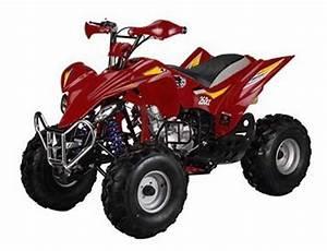 Taotao 250cc Raptor Style Atv Manual 4