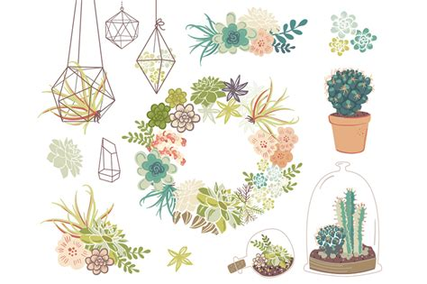 wedding succulents floral clipart illustrations  creative market