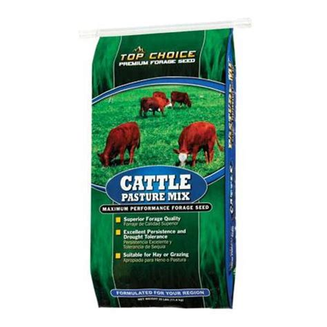 pasture seed cattle mix forage premium choice