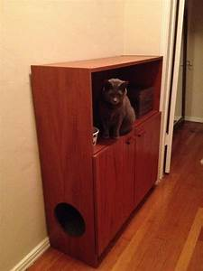 18 best Cat Proofing Ideas images on Pinterest