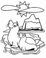 Seal Coloring Pages Crayola Colorear Para Animals Fun Fish Baby Printable Ultimate sketch template