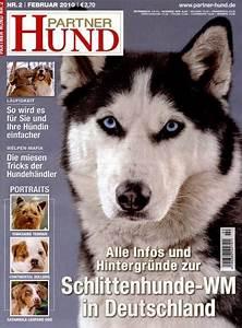 Partner Hund Abo Kündigen : partner hund abo partner hund zeitschrift im abonnement ~ Lizthompson.info Haus und Dekorationen