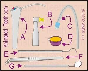 Dental quizzes for kids.- Check-ups, Prevention, Dentist ...