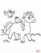 Coloring Horse Birds Ausmalbilder Pferd Horses Colouring Pferde Printable Ausdrucken Miniature Bird Zum Uccellini Colorare Disegni Foal Tiere Ausmalbild Indianer sketch template