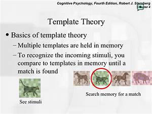 perception With template matching theory