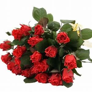 1 Rote Rose Bedeutung : rosenversand rote rosen im bund rote rosen online deutschlandweit versenden mit ~ Whattoseeinmadrid.com Haus und Dekorationen