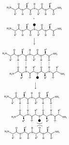 Amylin Uncovered  A Review On The Polypeptide Responsible