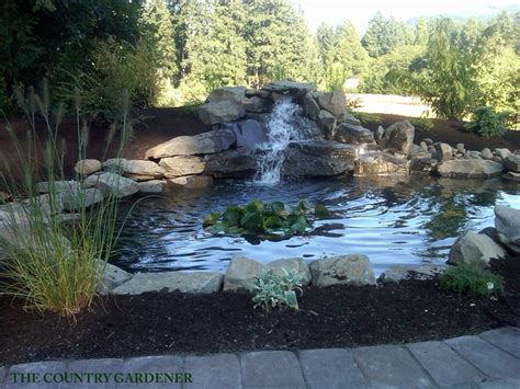 fish ponds with waterfalls 1000 images about koi fish pond on pinterest gardens backyard ponds and backyards
