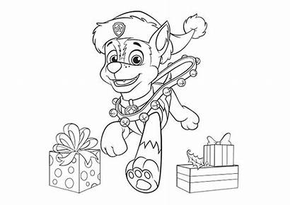Patrol Paw Chase Coloring Pages Drawing Printable