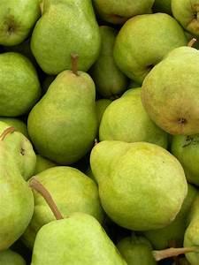 Fruit Warehouse: Pir ( Pear )  Pear