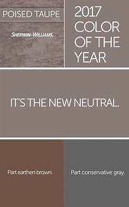 is taupe brown or gray - Design Decoration