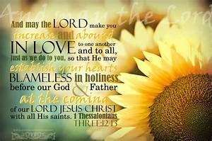 1 Thessalonians 3 12