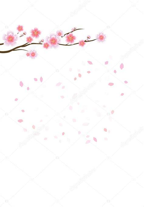 Rama de sakura con flores Rama de cerezo con pétalos