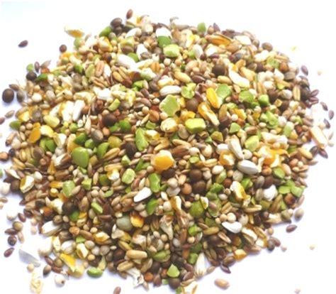 cuisine pigeon no added wheat bird food food4wildbirds