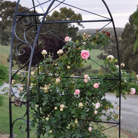 Garden Arch Selection Farmweld