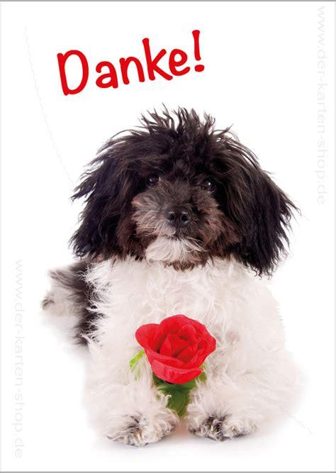 postkarte grusskarte dankeskarte suesser hund mit rose danke