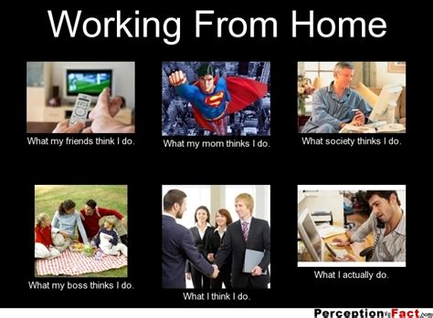 Work Friends Meme - working from home what people think i do what i really do perception vs fact