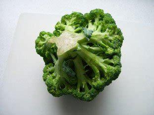 comment cuisiner le brocoli comment cuisiner brocolis