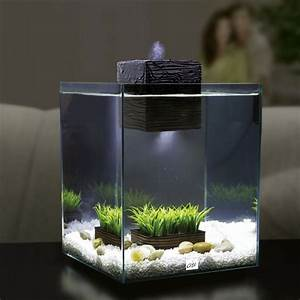 Deco Aquarium Zen : zen garden aquarium seasonal style let spring in ~ Melissatoandfro.com Idées de Décoration