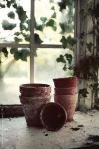 Potting Shed Window