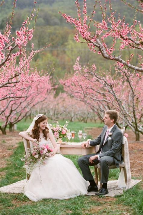 Cherry Blossom Wedding Ideas Elizabeth Anne Designs: The