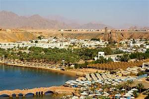 18 killed in road accident in Egypt's Sinai | The Times of ...