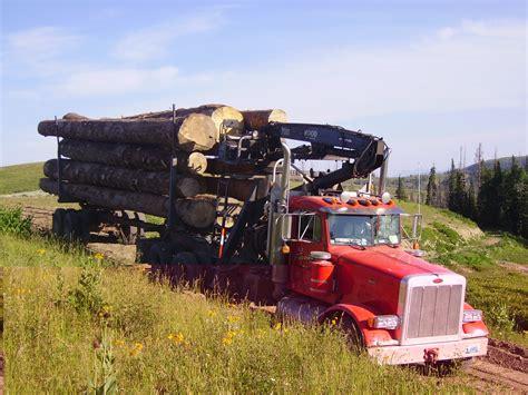 American Loggers Logging Trucks