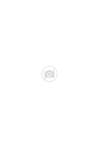 Ediger Sint Eller Martin Wikipedia Martinuskerk Kirche