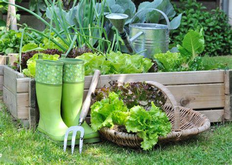 8 gardening trends spotted on garden club