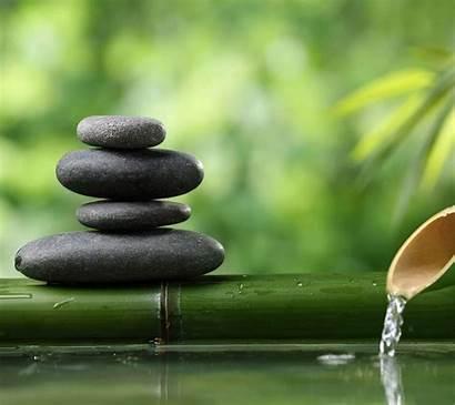 Yoga Zen Lets Itself Bikram Yogi Consider