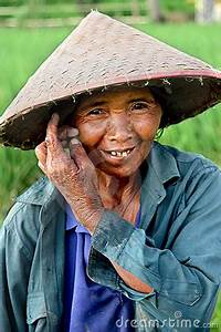 Rice Paddy Worker Editorial Photography - Image: 12334117