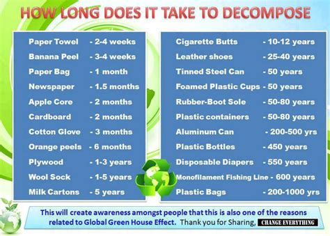 How Long Does It Take To Decompose? Burntoringe