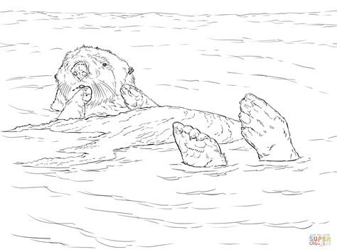 Otter Kleurplaat by Sea Otter Floating Coloring Page Free Printable Coloring