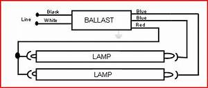 Electronic Ballast Upgrade In 8 U0026 39  T12 Fixture