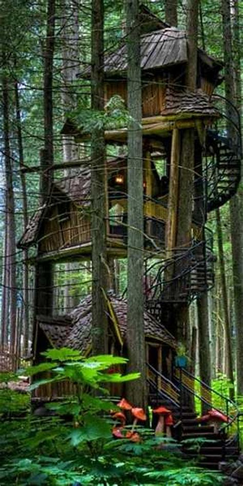 standout tree house designs    kids anymore