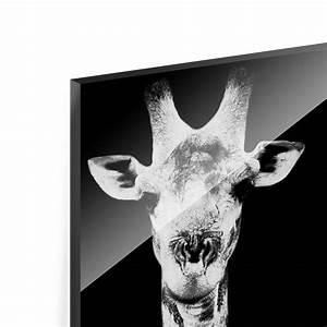 Glasbild Schwarz Weiß : glasbild giraffen duo schwarz weiss panorama hoch ~ A.2002-acura-tl-radio.info Haus und Dekorationen