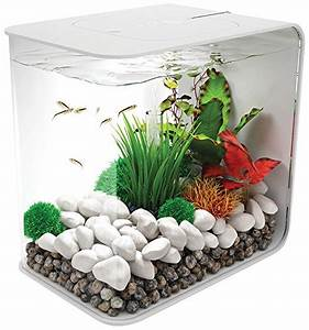 Aquarium Zubehör Günstig : reef one biorb flow aquarium g nstig ~ Frokenaadalensverden.com Haus und Dekorationen