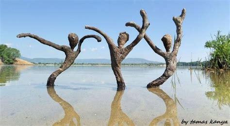 driftwood art inspirations  creative sculptures